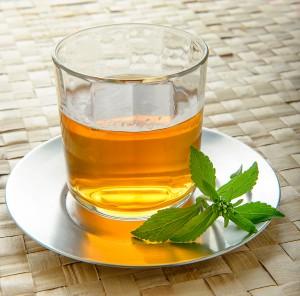 Stevia-Infusion-300x296 La Stevia, un beneficioso sustituto del azúcar