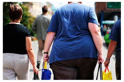 obesogênios-obesidade