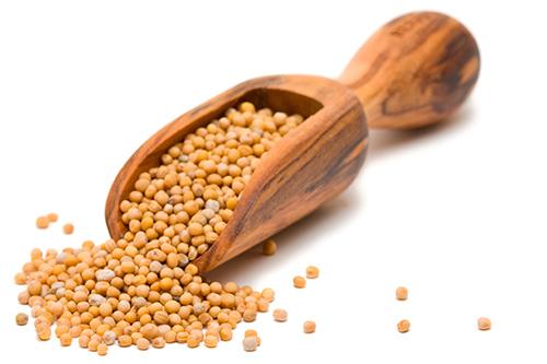semillas-mostaza Semillas que te ayudan a adelgazar