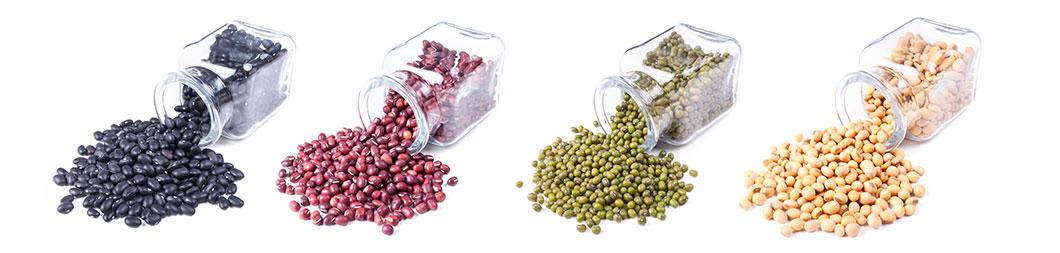 variedades de soja