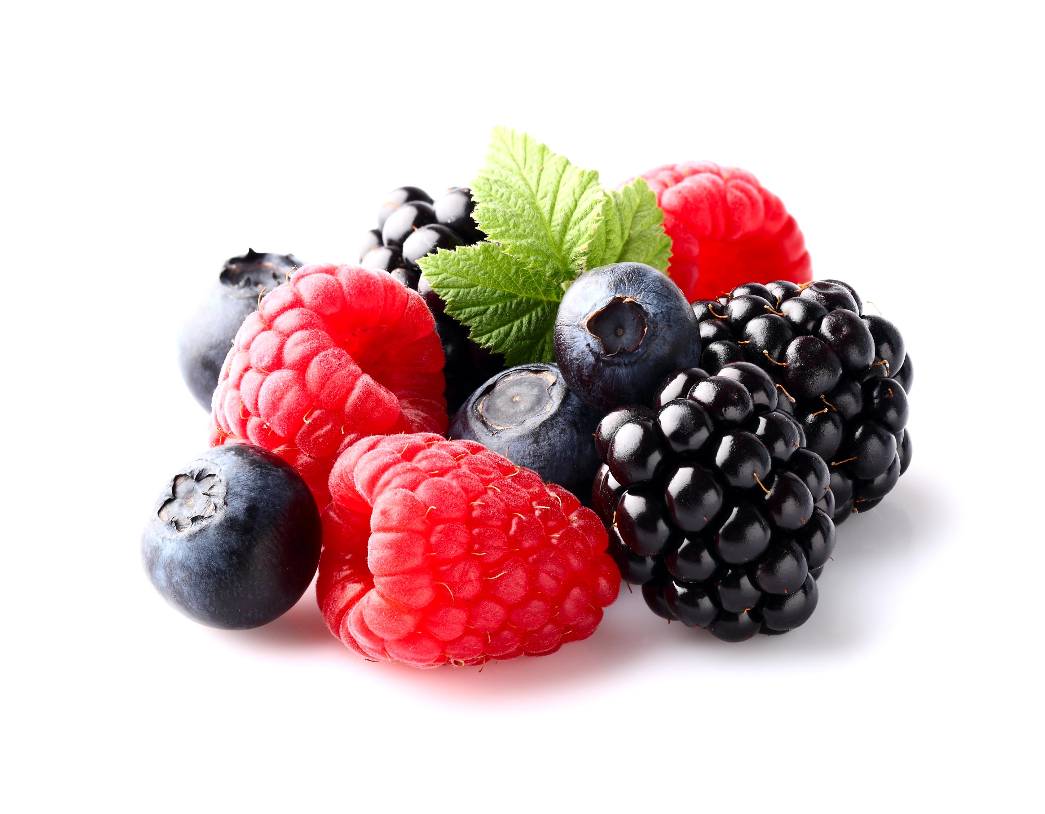 La dieta mediterr nea y los polifenoles reducen el riesgo for Arbol de frutos rojos pequenos