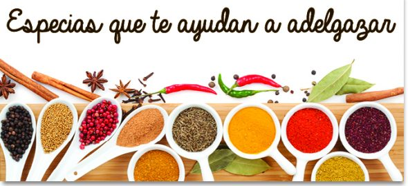 Banner Noticia especias adelgazar e1461057322492