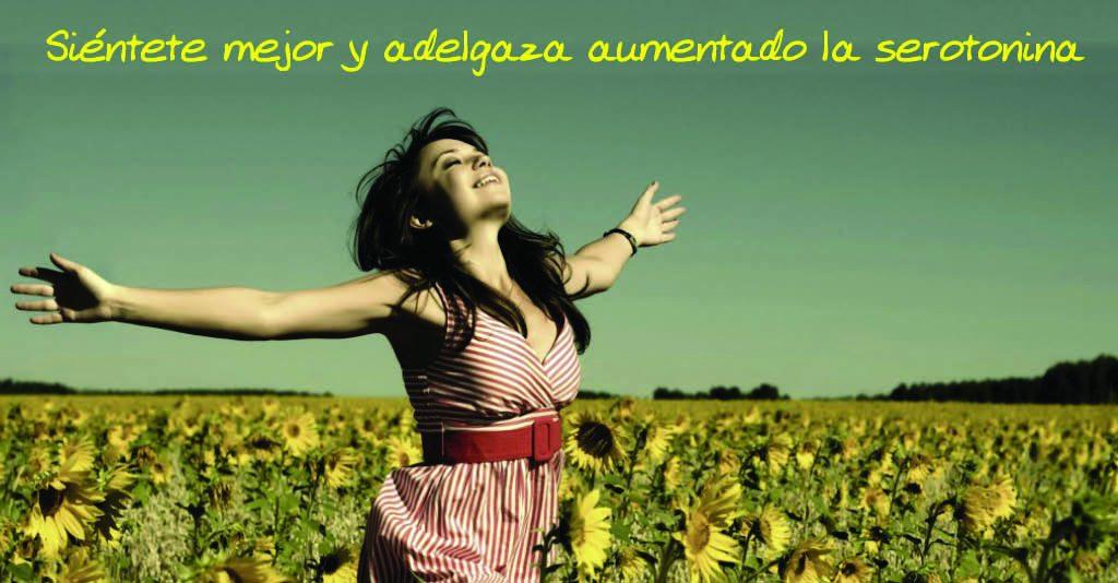 Banner para Articulo Blog y Facebook serotonina