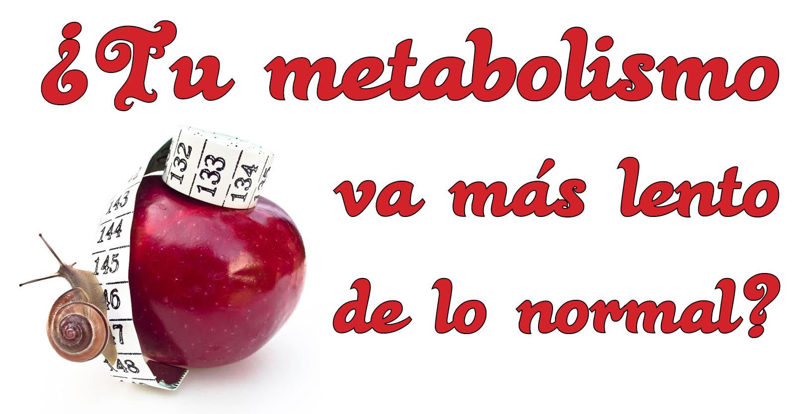 Banner para Articulo Blog y Facebook metabolismo
