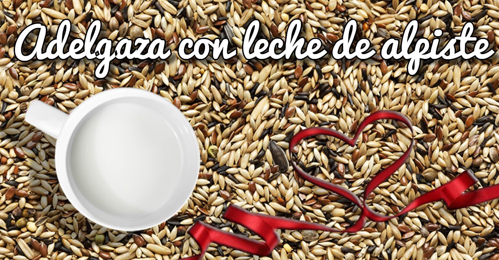 Banner para Articulo Blog y Facebook leche de alpiste