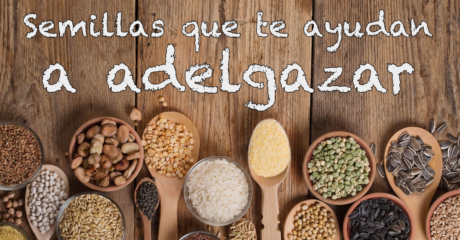 Banner para Articulo Blog y Facebook semillas