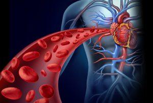 colesterol-trigliceridos-hipertension