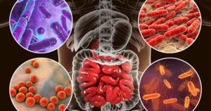 MICROBIOTA_850-1-300x158 MICROBIOTA: Esos microoganismos beneficiosos